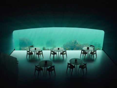 Underwater restaurant is ready for visitors and it looks incredible