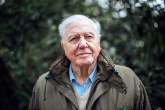 """For use in UK, Ireland or Benelux countries only Undated BBC handout photo of Sir David Attenborough, who will present an """"urgent"""" new documentary film about climate change, looking at the potential threats to our planet and the possible solutions. PRESS ASSOCIATION Photo. Issue date: Saturday March 23, 2019. See PA story SHOWBIZ Attenborough. Photo credit should read: Polly Alderton/BBC/PA Wire NOTE TO EDITORS: Not for use more than 21 days after issue. You may use this picture without charge only for the purpose of publicising or reporting on current BBC programming, personnel or other BBC output or activity within 21 days of issue. Any use after that time MUST be cleared through BBC Picture Publicity. Please credit the image to the BBC and any named photographer or independent programme maker, as described in the caption."""