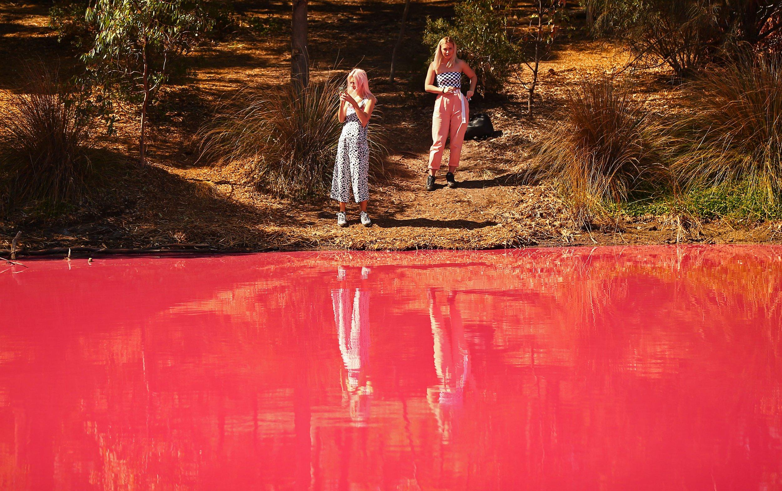 Lake turns bright pink due to amazing natural phenomenon