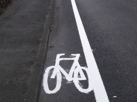 Cyclist mocks new narrow bicycle lane saying 'my shoulders are wider'