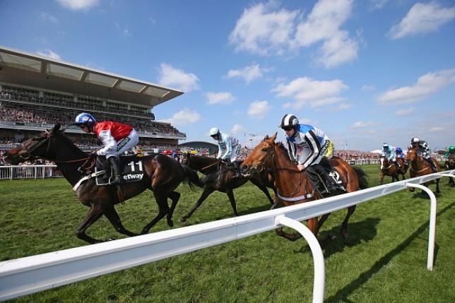 a horse race