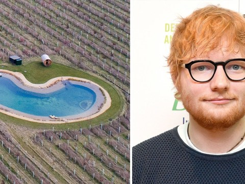 Ed Sheeran's 'wildlife pond' annoys neighbours again as 'wooden cabin could be used as changing room'