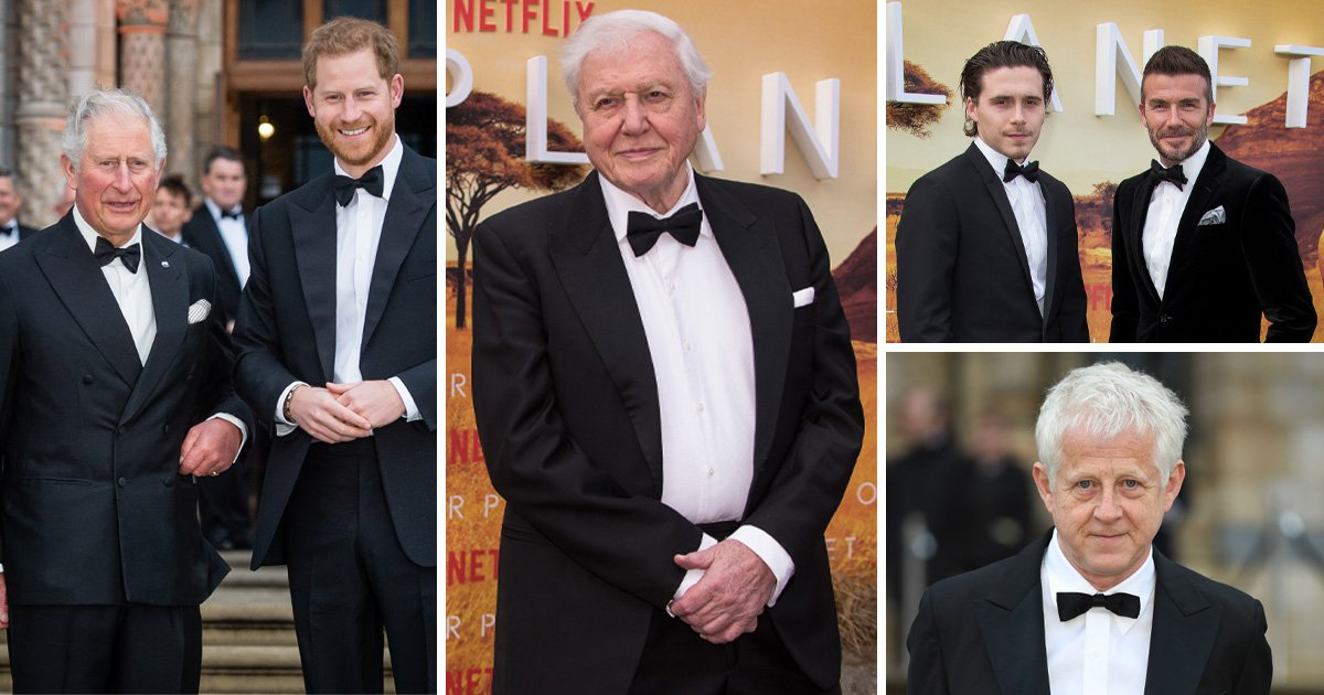 Prince Charles pays tribute to Sir David Attenborough at star-studded Our Planet premiere