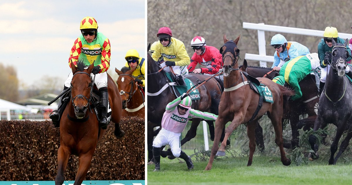 Two horses die at Aintree on Grand National Ladies Day