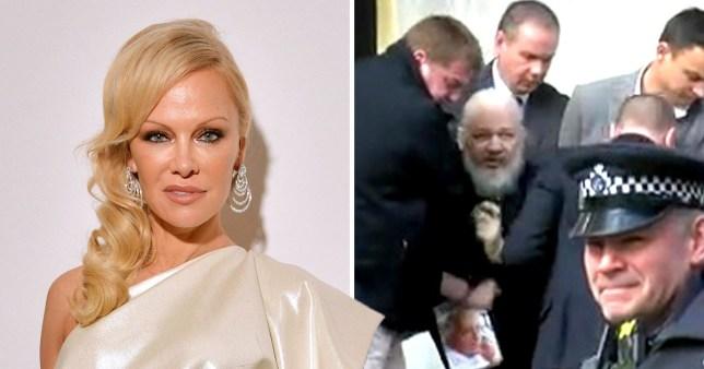 Pamela Anderson and Julian Assange comp