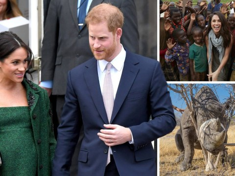 Harry and Meghan 'could move to Africa after baby is born'