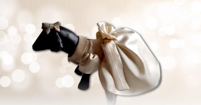 Bridesmaid dress on a stuffed dog toy