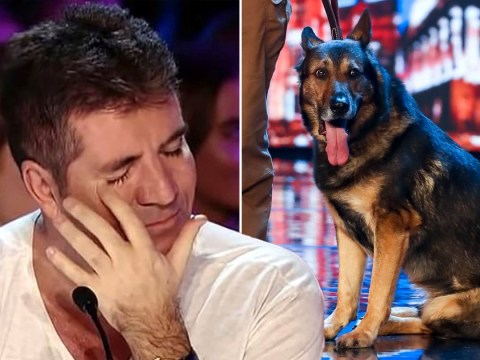 Simon Cowell reduced to tears by 'mind-reading' police dog on Britain's Got Talent who was nearly killed