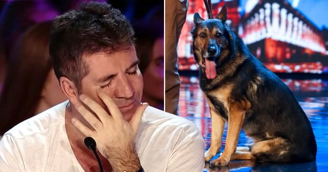 Simon Cowell in tears over 'mind-reading' dog on Britain's Got