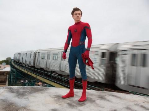 Tom Holland couldn't explain that Avengers: Endgame and Spider-Man timeline 'plot hole'