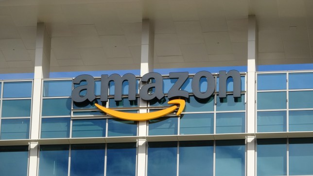 Close-up of sign with logo on facade of the regional headquarters of ecommerce company Amazon in the Silicon Valley town of Sunnyvale, California, October 28, 2018. (Photo by Smith Collection/Gado/Getty Images)
