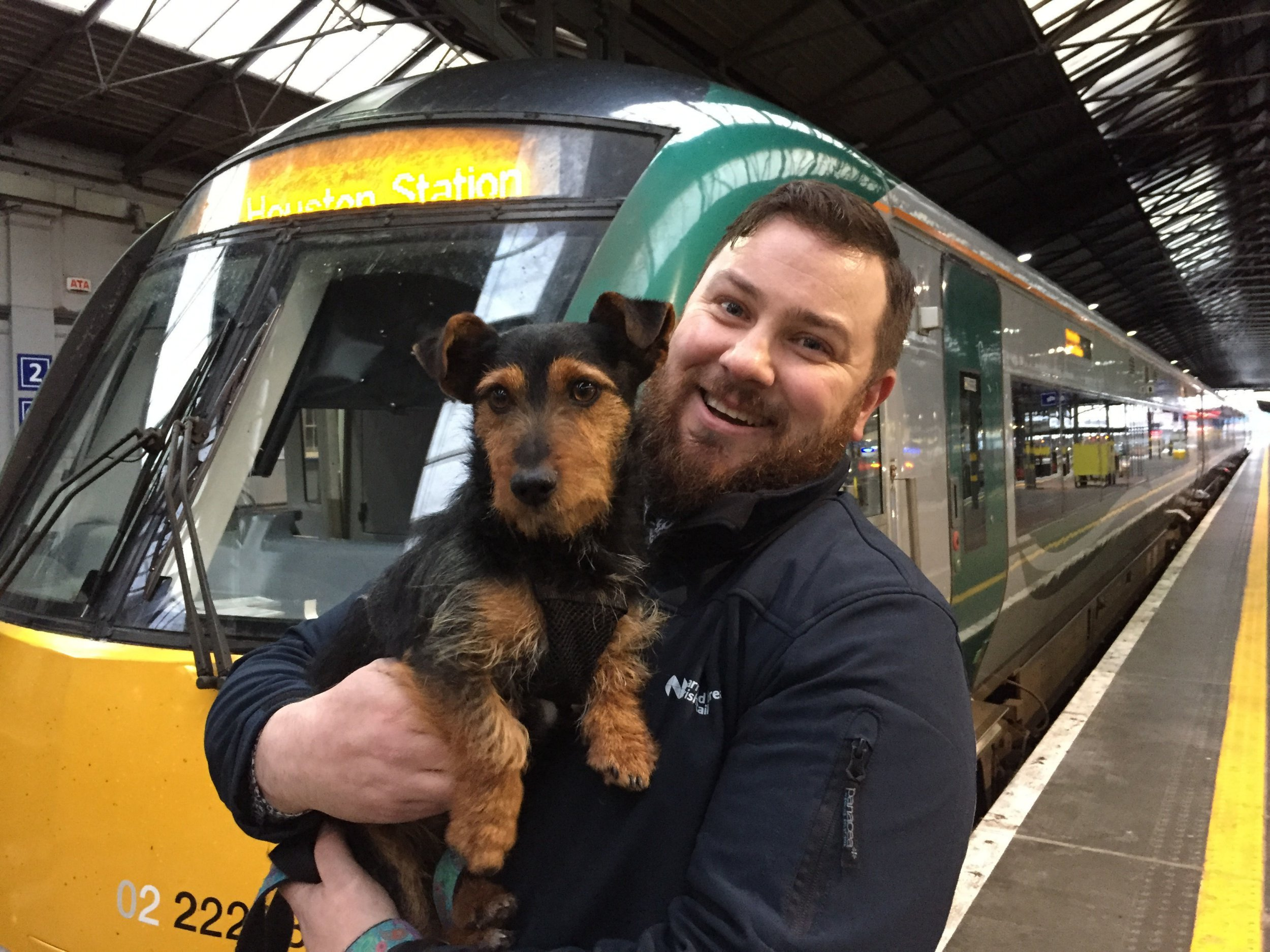 'Perfectly behaved' terrier boards commuter train all by himself