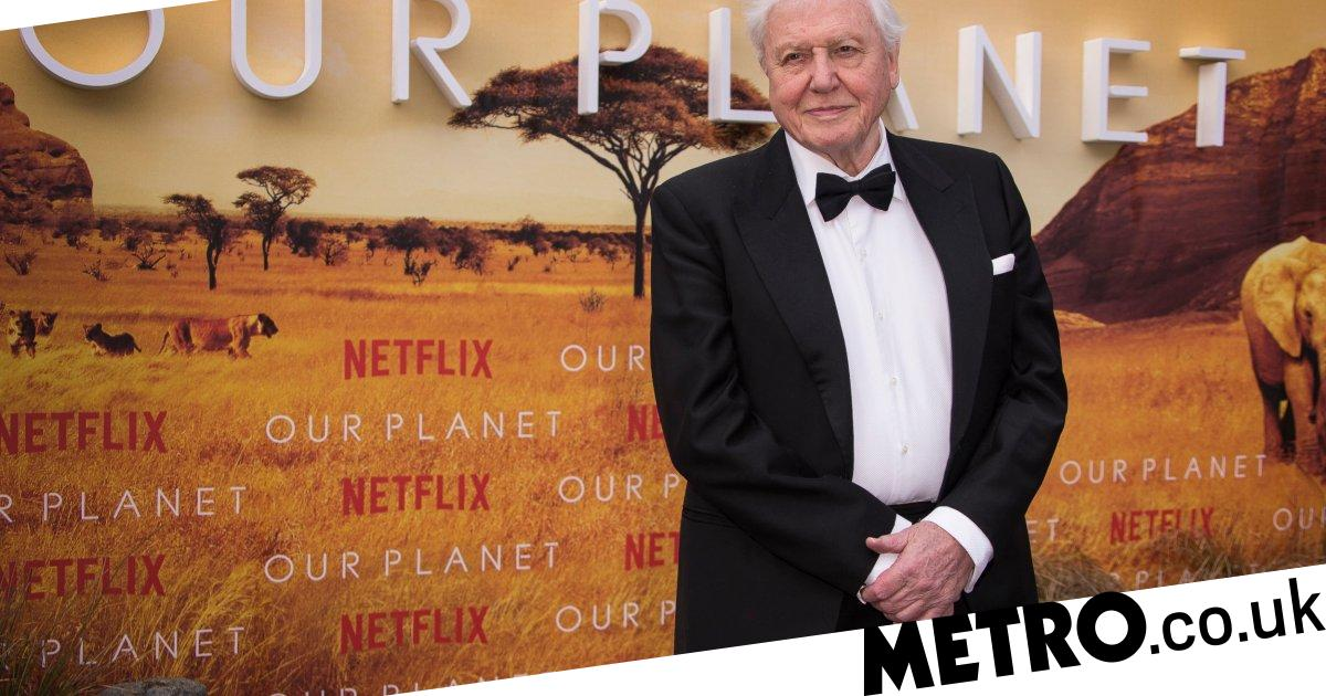 Our Planet viewers convinced Sir David Attenborough's