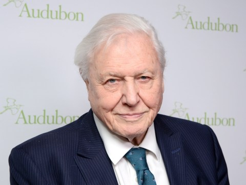 David Attenborough's most inspiring life quotes