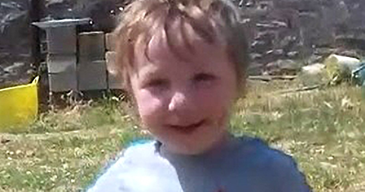 Boy, 3, crushed to death by father's Land Rover as he reversed on farm