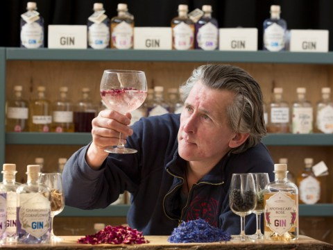 My Odd Job: This is what it takes to be a gin genie
