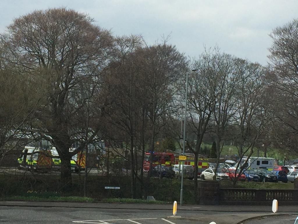 Seven people rushed to hospital after 'gas leak' at park