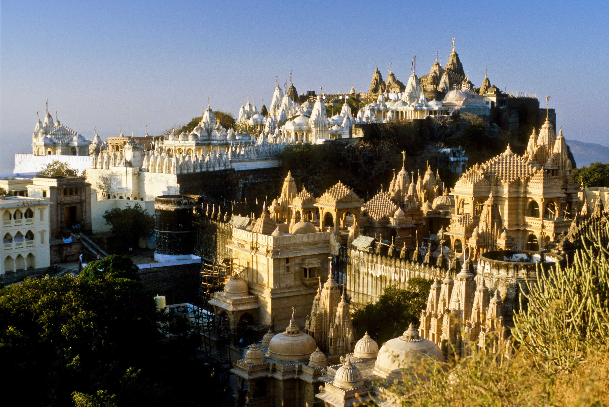 Palitana in India, a world's initial entirely vegetarian city