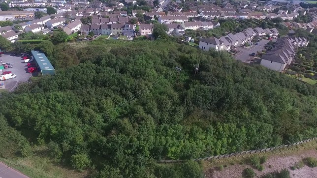 This is the woodland area at the end of Seymour Drive in Dartmouth, Devon, before it was cleared in December 2018. See SWNS story SWBPLtree - Residents outraged after developer cuts down massive woodland - before he secured planning permission to build homes. Residents of a small town are outraged after an area of woodland was snapped up by a property developer - who then cut down nearly all the trees before securing permission. Andy Love, 56, owns a house backing onto the land where the trees stood, and said he was shocked in December last year when the developer started lopping down trees. Several residents of Seymour Drive in Brixham, Devon, complained to South Hams District Council and it later emerged the developer didn't have planning permission. Now, the developer, Dave Holloway, is locked in a bitter dispute with the local authority but local residents say the damage has already been done and the wildlife cannot be reclaimed.