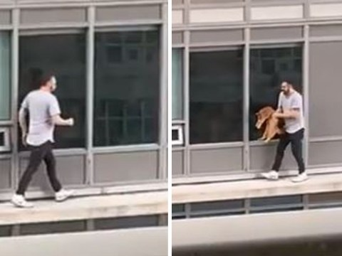 Owner risks life to rescue cat stranded on 60ft high balcony