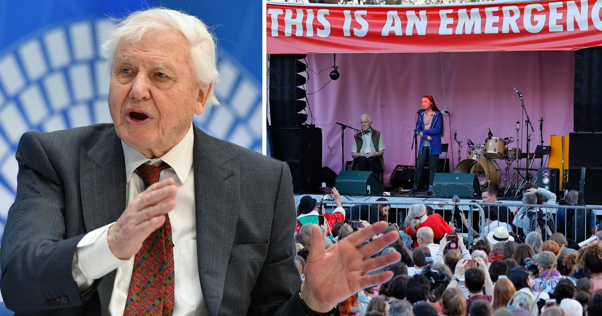 David Attenborough says climate change school strikes are 'certainly justified'
