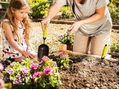 Quick fixes to make your garden 'green' over the weekend
