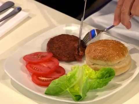 Lab-grown burgers and meatballs 'will be on sale within five years', scientists claim