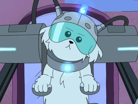 Rick And Morty creator may have teased return of Snuffles for season 4