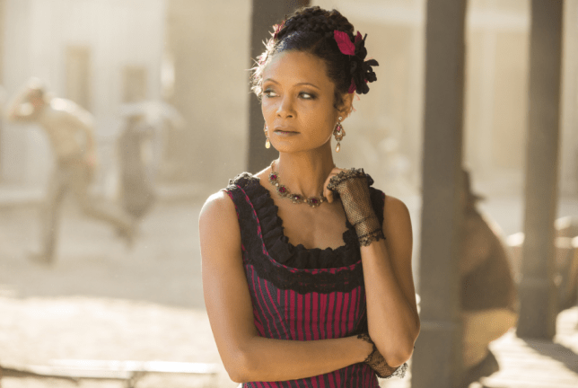 Westworld season 3 won't be arriving until 2020 (Picture: Rex)