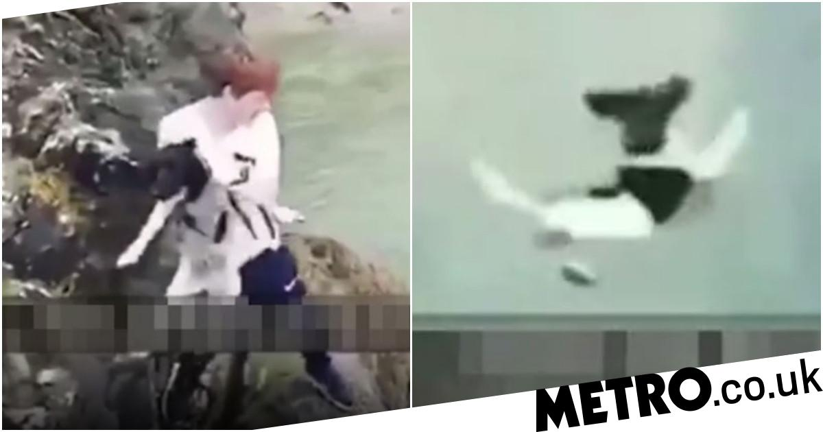 Laughing scumbag threw scared dog over a cliff into the sea as friend filmed