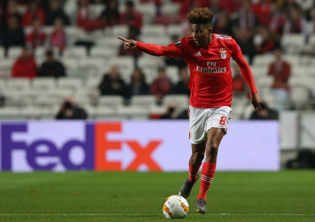 f3b00d84 Man Utd, Tottenham and Liverpool all interested in Gedson Fernandes ...