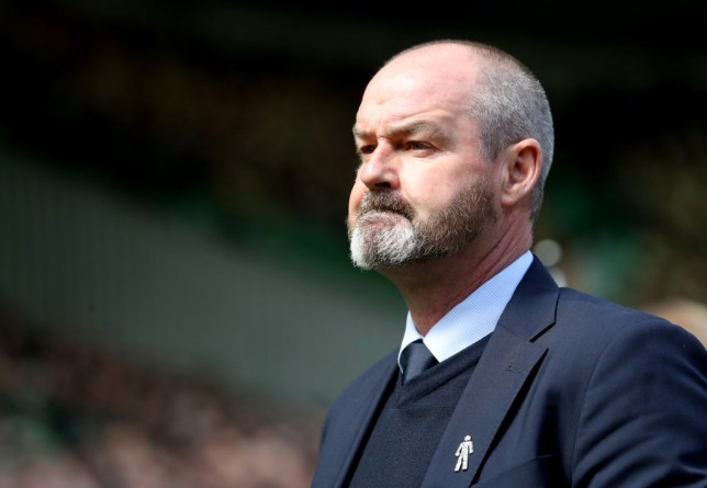 Steve Clarke has been named Scotland's new head coach