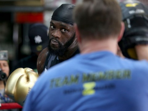 Deontay Wilder confirms talks with Anthony Joshua are ongoing