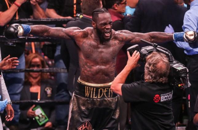 Deontay Wilder beats Dominic Brezeale