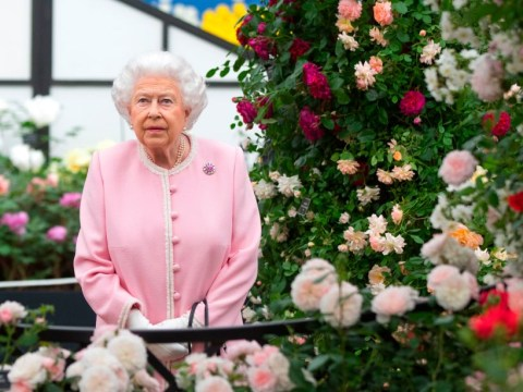 Where is the Chelsea Flower Show held and when is it on TV?