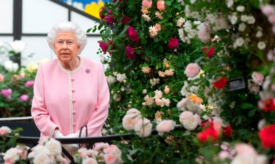 Queen Elizabeth II pictured at the Chelsea Flower Show