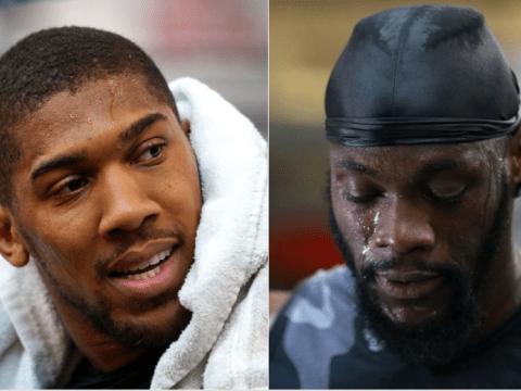 Anthony Joshua backs Deontay Wilder to beat Dominic Breazeale