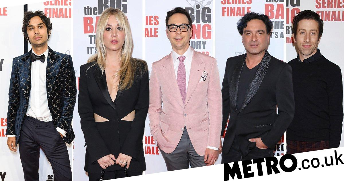 the big bang theory cast and celebrate sitcom at finale wrap party