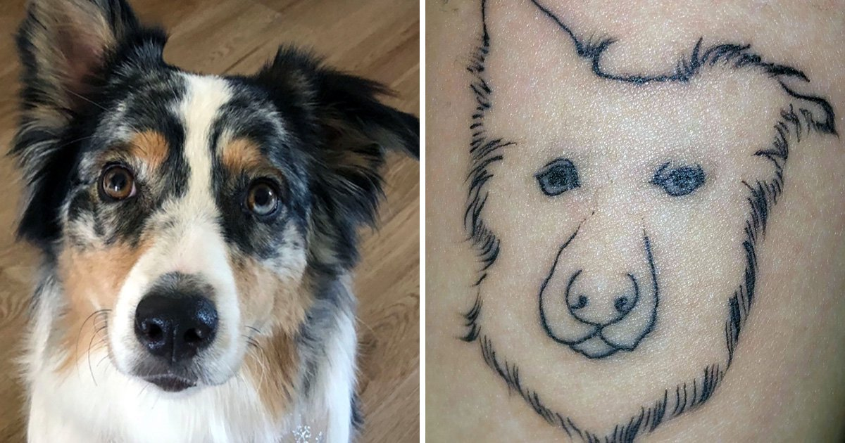 Woman's tattoo of her dog ends up looking like 'male genitalia'