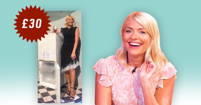 Holly Willoughby leaves fans all confused as she tries to sell broken fridge for £30