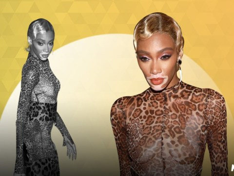 Winnie Harlow is all kinds of yes in sheer leopard print cat suit as she takes on Met Gala 2019 party