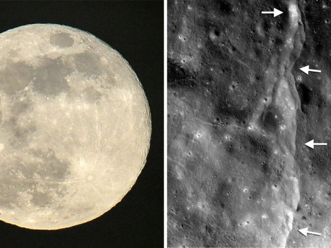 Powerful 'moonquakes' are causing the moon to shrink over time