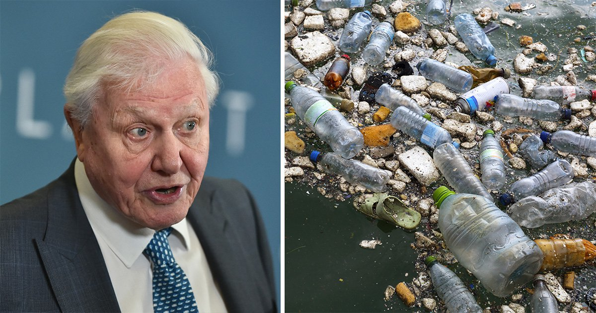 Sir David Attenborough has warned about the 'unfolding catastrophe' of plastic waste across the world