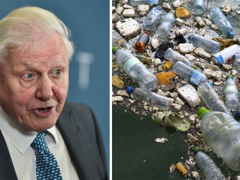Sir David Attenborough warns of the 'unfolding catastrophe' of plastic pollution