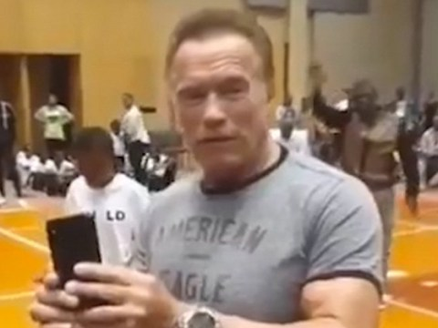 Arnold Schwarzenegger attacked in South Africa at fan meet and greet