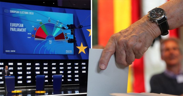 Highest turnout in European Parliament elections in 20 years