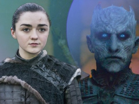 Game Of Thrones' Arya Stark was told how to kill The Night King right from the very beginning