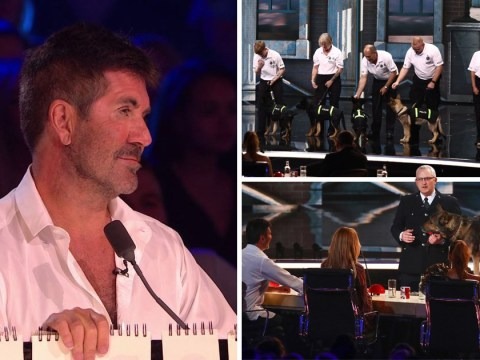 Britain's Got Talent finalist Finn the police dog shares the stage with puppies as Simon gets emotional again