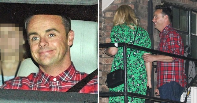 Ant McPartlin plays dad to Anne-Marie's kids