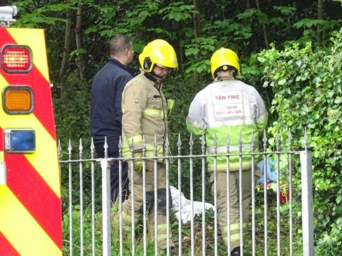Schoolboy, 14, airlifted to hospital after being hit by falling tree branch
